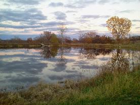 Reflections in Northeast Kansas